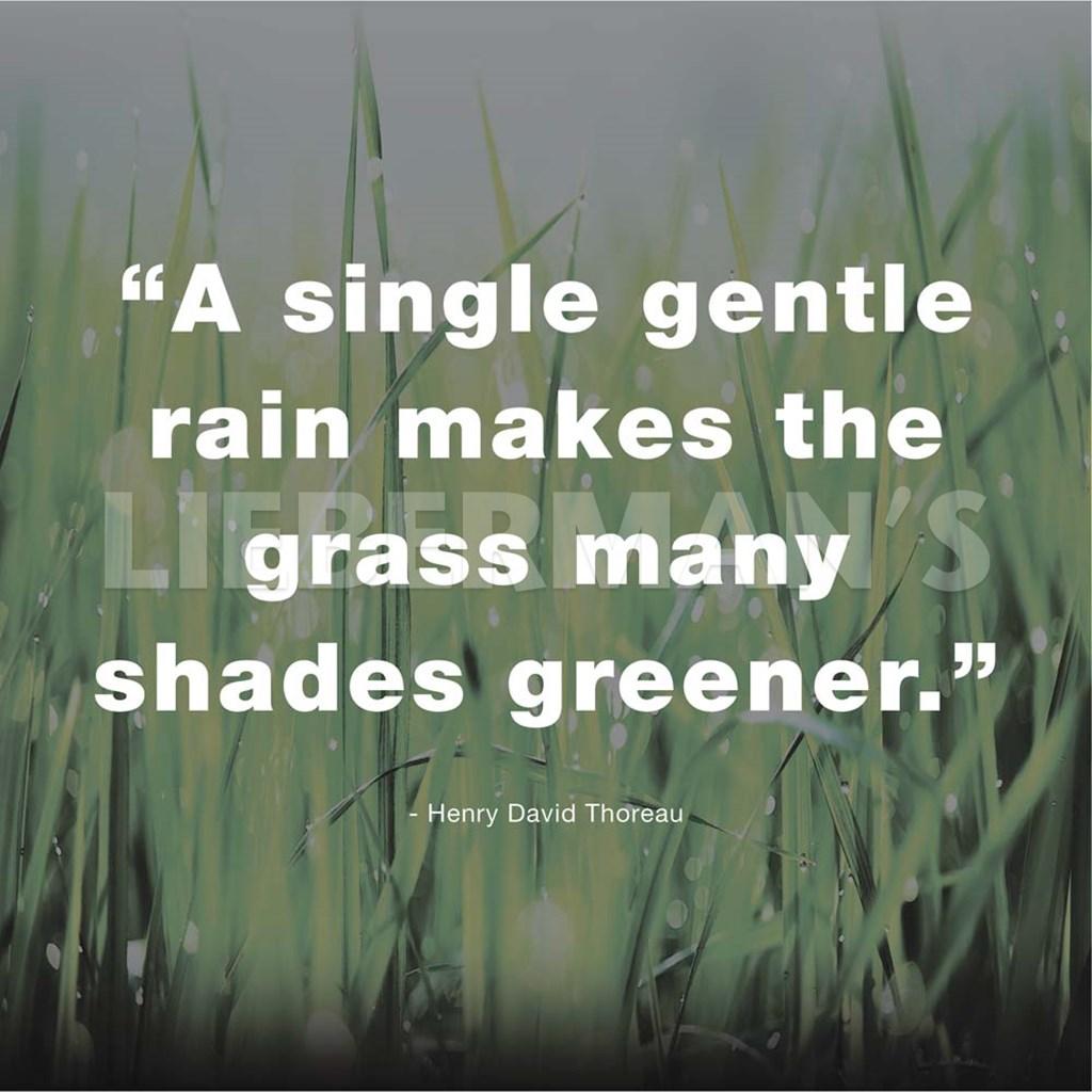 Thoreau Quotes: Henry Thoreau Quote (Dark) Fine-Art