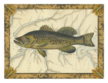 Black Bass on Map by Vision Studio art print
