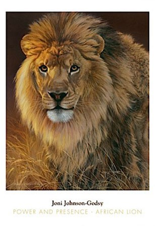 Power and Presence- African Lion by Joni Johnson-Godsy art print