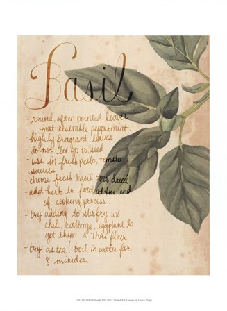 Herb Study I by Grace Popp art print