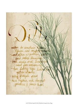 Herb Study II by Grace Popp art print