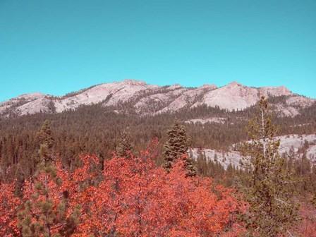 Sierra Nevada Mountains by Naxart art print