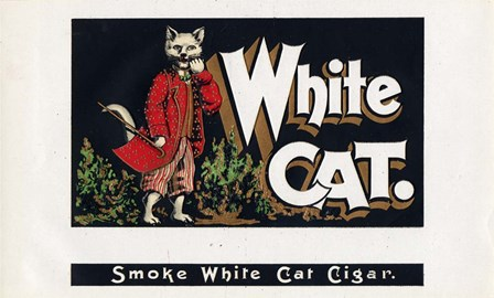 White Cat by Art of the Cigar art print