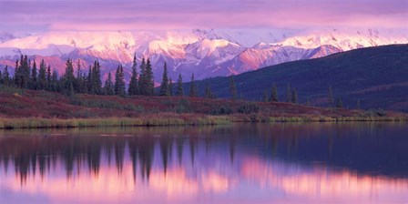 Alaska Denali National Park by Panoramic Images art print