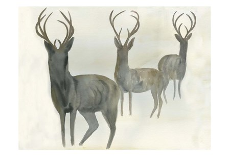 Deer Trio by Beverly Dyer art print