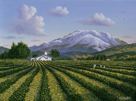 Mount Sta Helena - Napa Valley by Eduardo Camoes art print