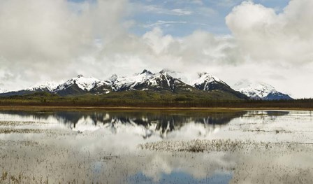 Snowcapped Chugach Mountains in Copper River Delta, Chugach National Forest, Alaska by Panoramic Images art print
