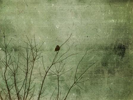 Blackbird by Christy Ann Hydeck art print