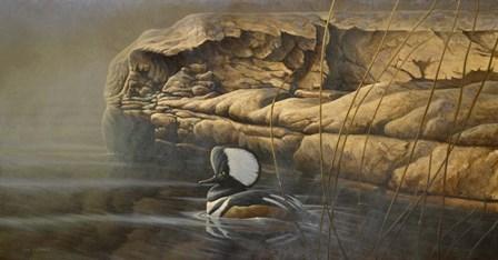 Misty Passage by Michael Budden art print