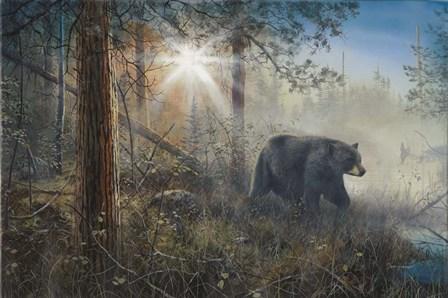 Shadow In The Mist by Jim Hansel art print